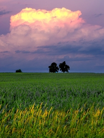 DN Sunset Bert Hartinger