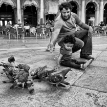 DM Feeding the Pigeons John Lowin